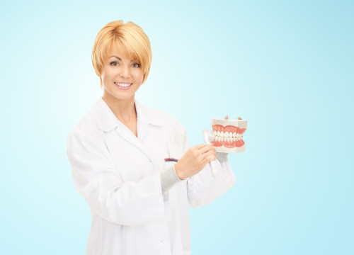 medicine, stomatology, people and dental hygiene concept - smiling female doctor with toothbrush and jaws model teaching how to brush teeth over blue background